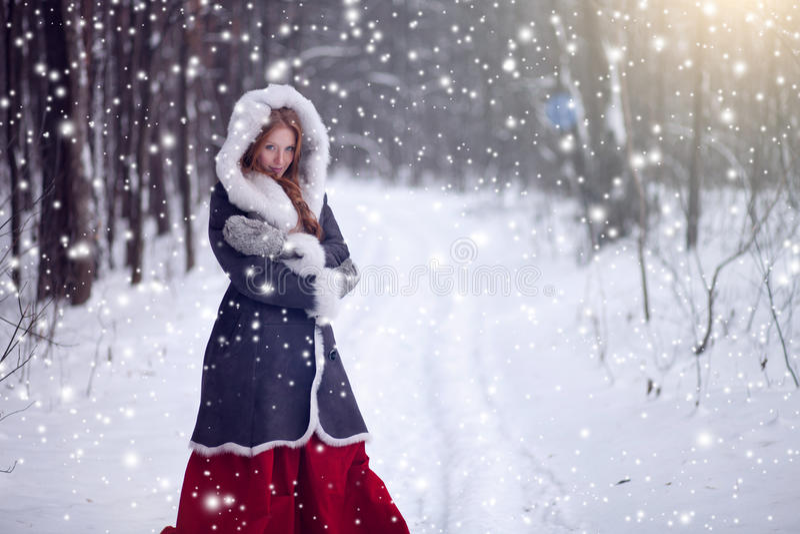 Όμορφο κορίτσι στο χειμερινό δασικό παραμύθι στοκ φωτογραφία