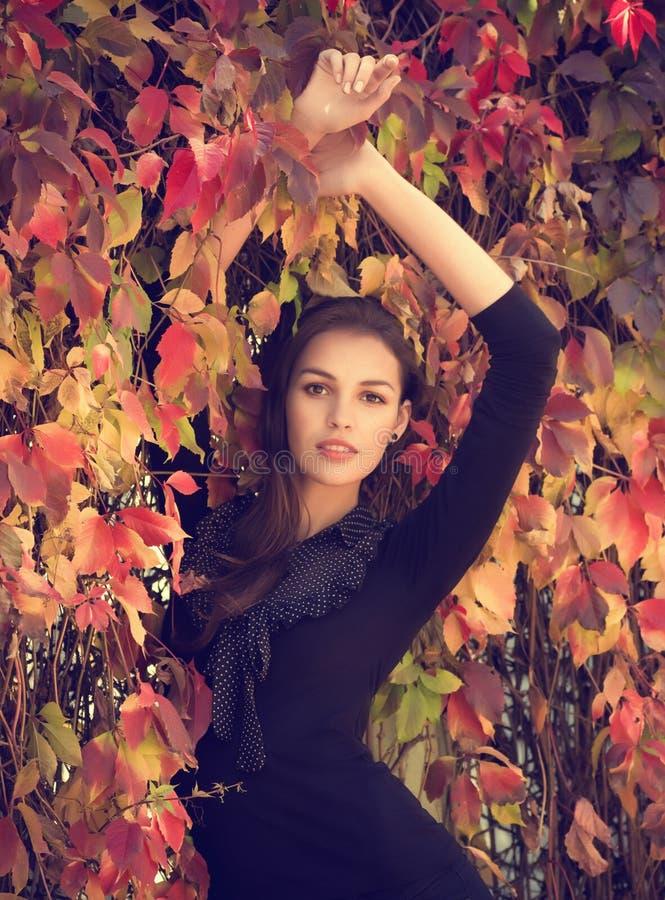 όμορφο κορίτσι στοκ εικόνα
