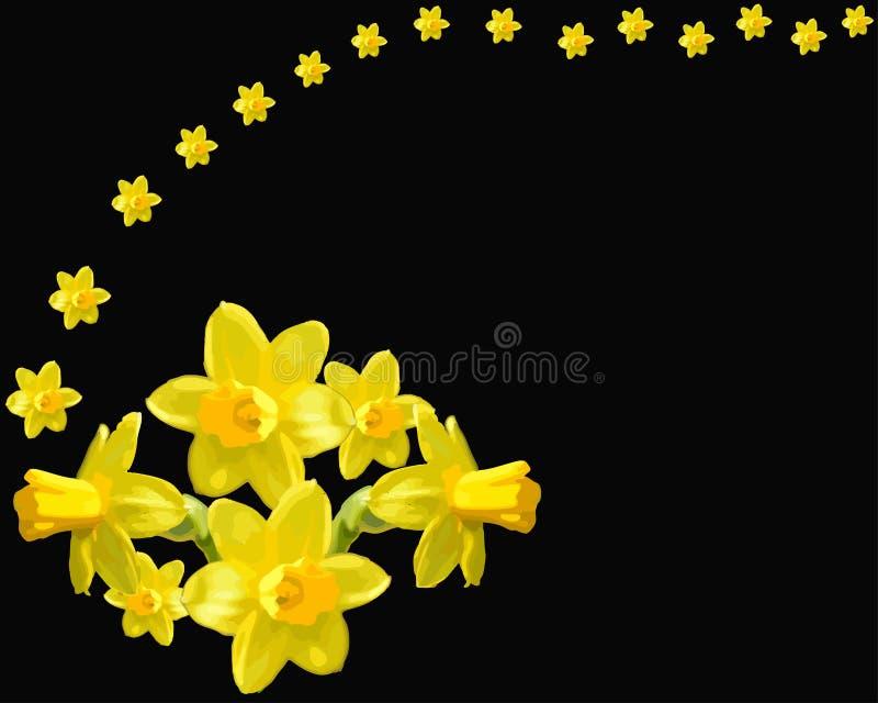 Όμορφο μαύρο υπόβαθρο daffodils απεικόνιση αποθεμάτων