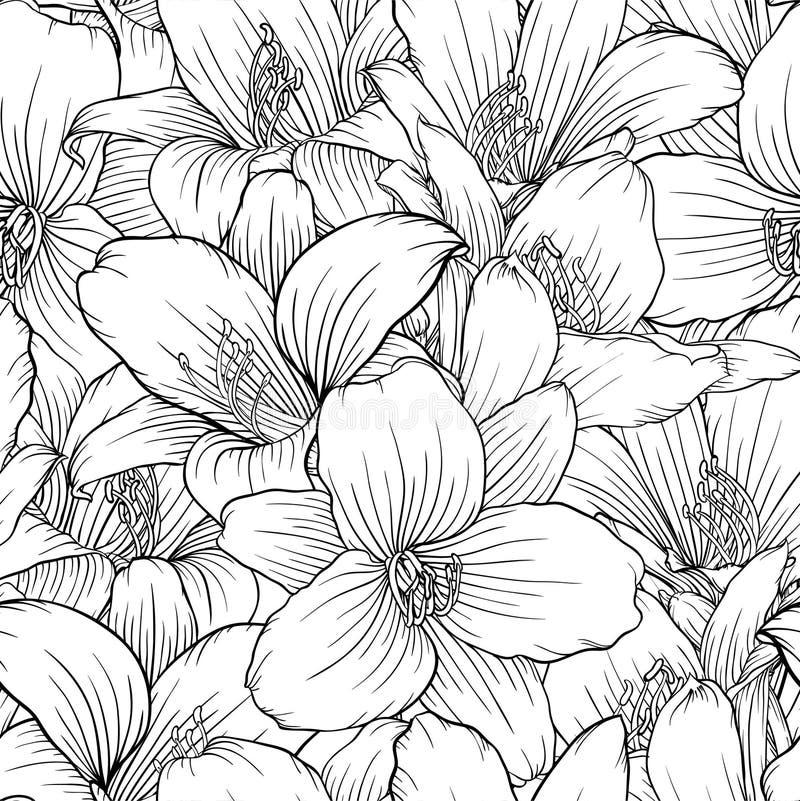 Όμορφο μονοχρωματικό, γραπτό άνευ ραφής σχέδιο με τους κρίνους Hand-drawn γραμμές περιγράμματος διανυσματική απεικόνιση