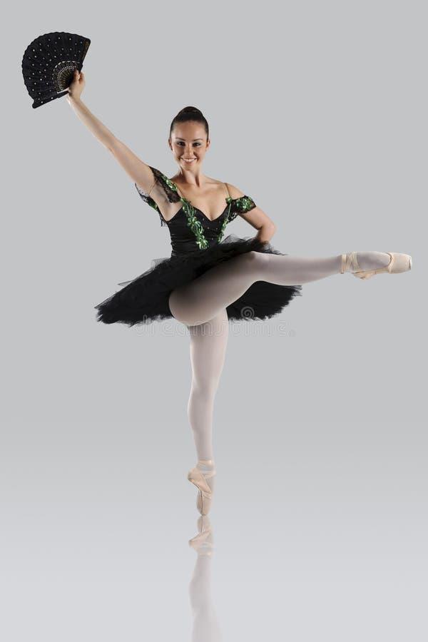 Όμορφο μπαλέτο στοκ εικόνες