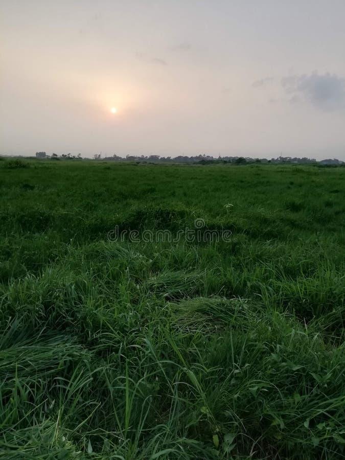 Όμορφο Μπανγκλαντές, dhaka, keranigoj στοκ φωτογραφίες