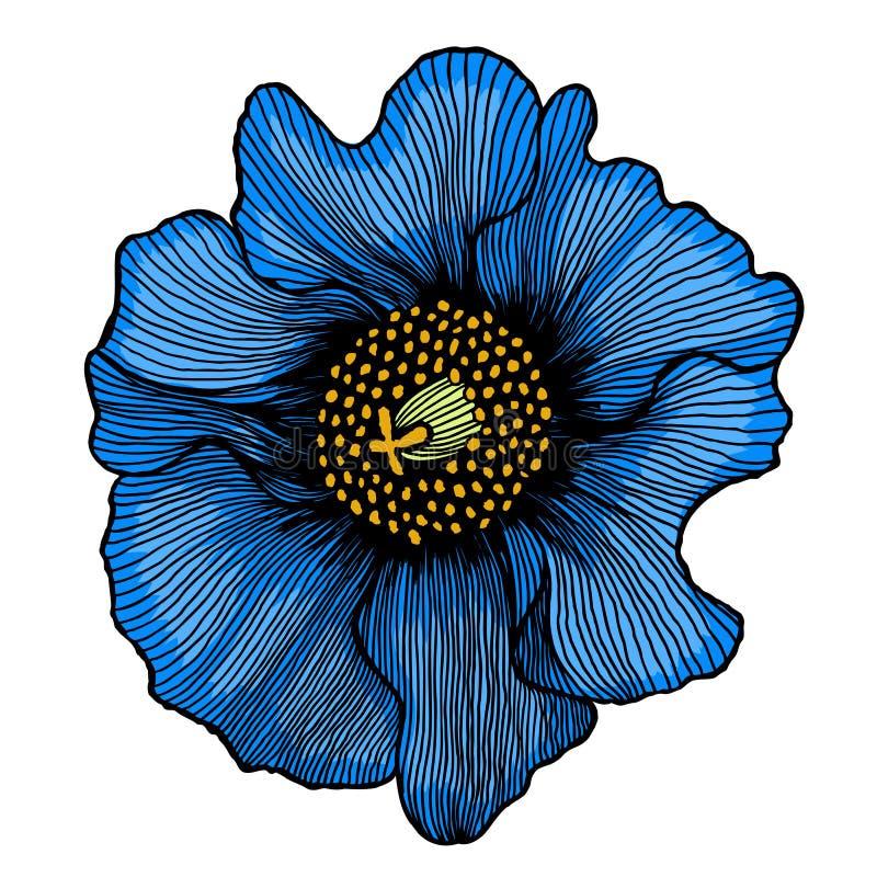 όμορφο μπλε λουλούδι απεικόνιση αποθεμάτων