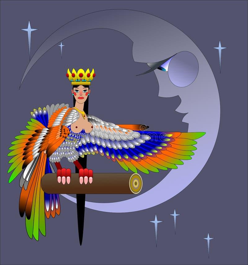 όμορφο μυθικό πουλί τη νύχτα διανυσματική απεικόνιση