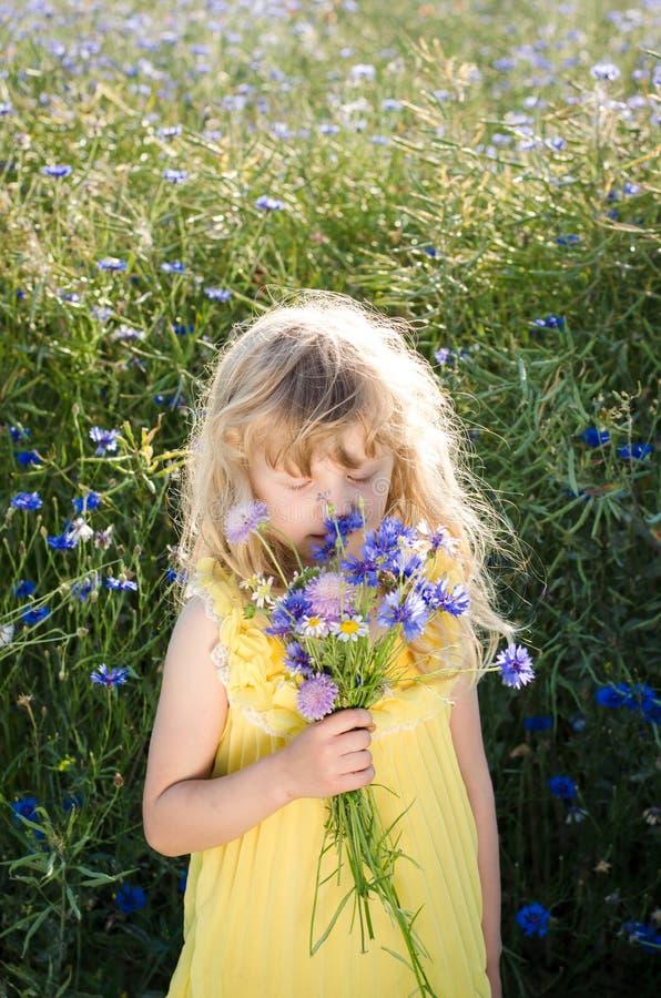 Όμορφο μυρίζοντας καλαμπόκι-λουλούδι κοριτσιών στοκ εικόνα