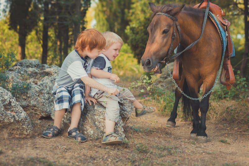 Όμορφο νέο αγόρι με την κόκκινη τρίχα και μπλε μάτια που παίζουν με το πόνι αλόγων φίλων του στην αγάπη forestHuge μεταξύ του παι στοκ φωτογραφίες με δικαίωμα ελεύθερης χρήσης