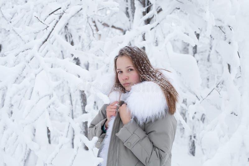 Όμορφο νέο κορίτσι σε ένα χειμερινό δάσος στοκ φωτογραφία με δικαίωμα ελεύθερης χρήσης