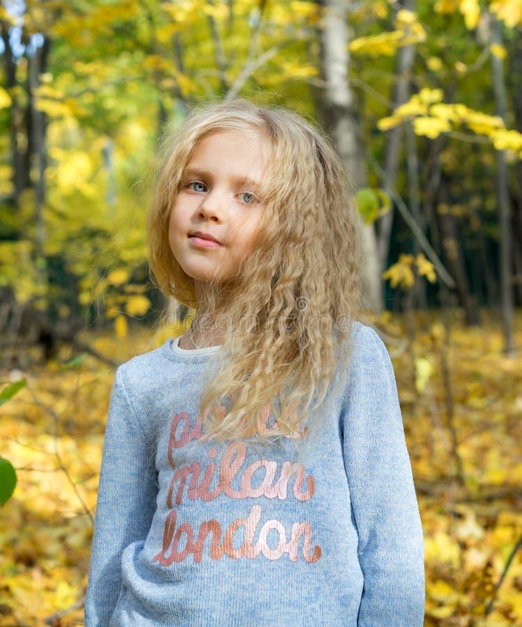 Όμορφο νέο κορίτσι στο δασικό πάρκο φθινοπώρου στοκ εικόνες