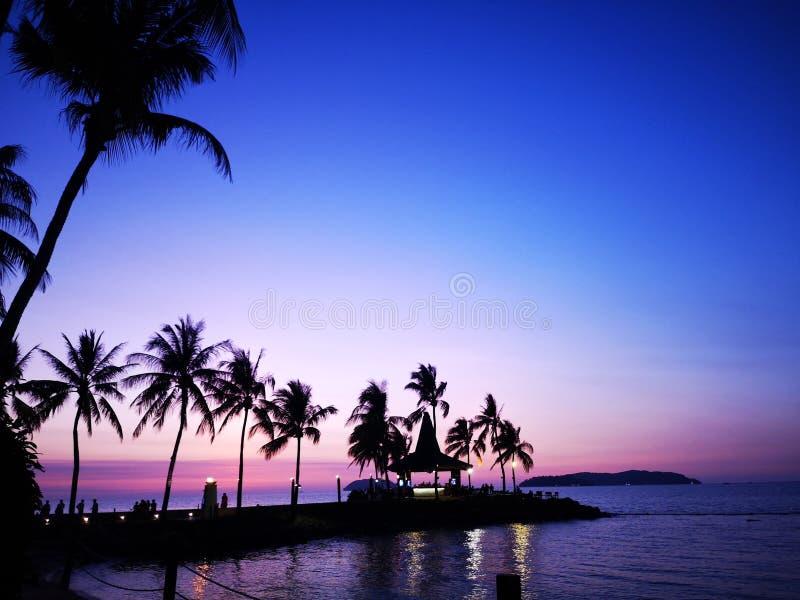 Όμορφο να περιβάλει ηλιοβασιλέματος με τα δέντρα καρύδων στην ακτή στοκ εικόνα