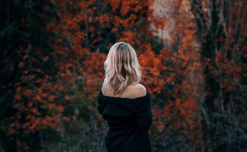 Όμορφο ξανθό δραματικό πορτρέτο γυναικών στοκ φωτογραφία με δικαίωμα ελεύθερης χρήσης
