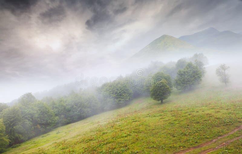 όμορφο ομιχλώδες καλοκαίρι βουνών τοπίων στοκ φωτογραφία με δικαίωμα ελεύθερης χρήσης