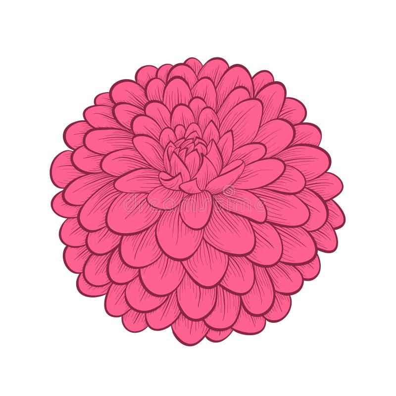 Όμορφο λουλούδι νταλιών στο ζωγραφισμένο στο χέρι γραφικό ST διανυσματική απεικόνιση