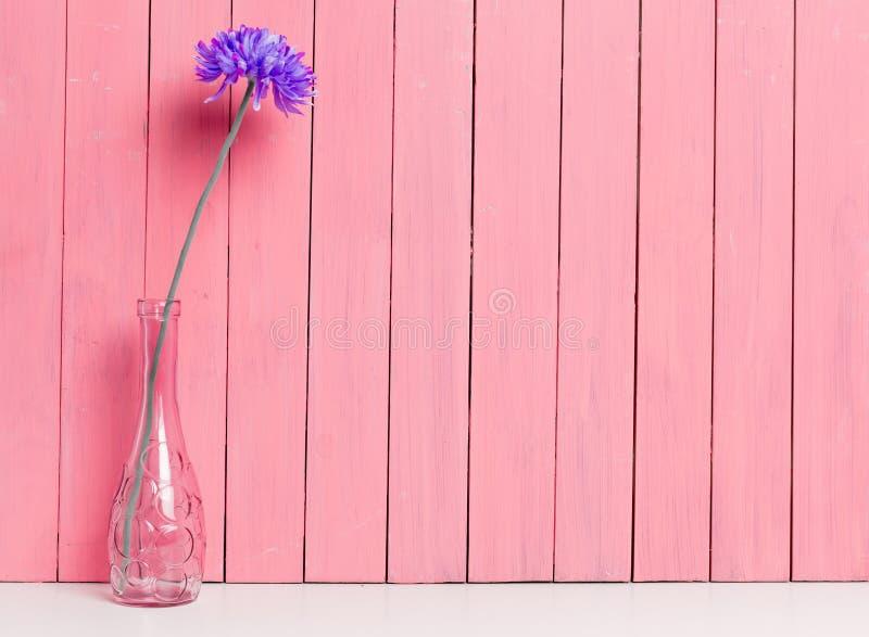 Όμορφο λουλούδι στο ρόδινο βάζο στοκ εικόνα
