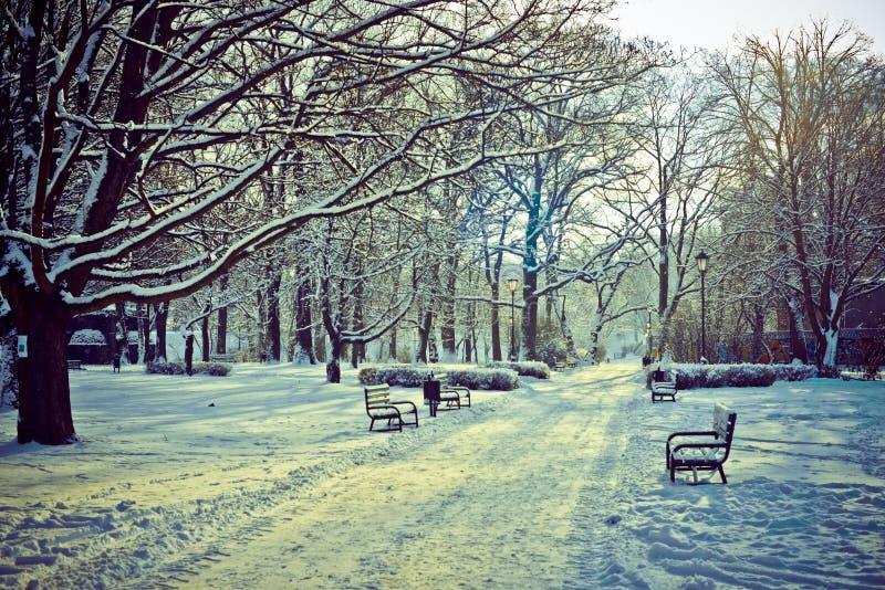 Όμορφο πάρκο το χειμώνα στοκ φωτογραφία με δικαίωμα ελεύθερης χρήσης