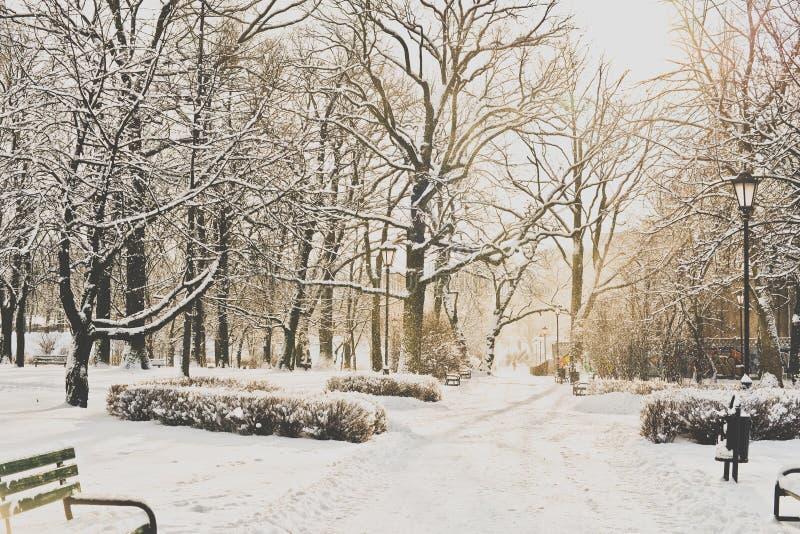 Όμορφο πάρκο το χειμώνα στοκ φωτογραφίες