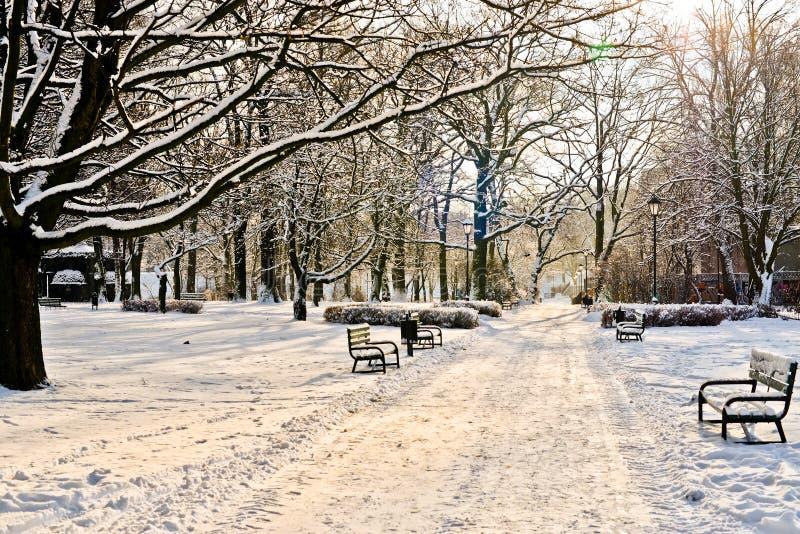 Όμορφο πάρκο το χειμώνα στοκ φωτογραφία