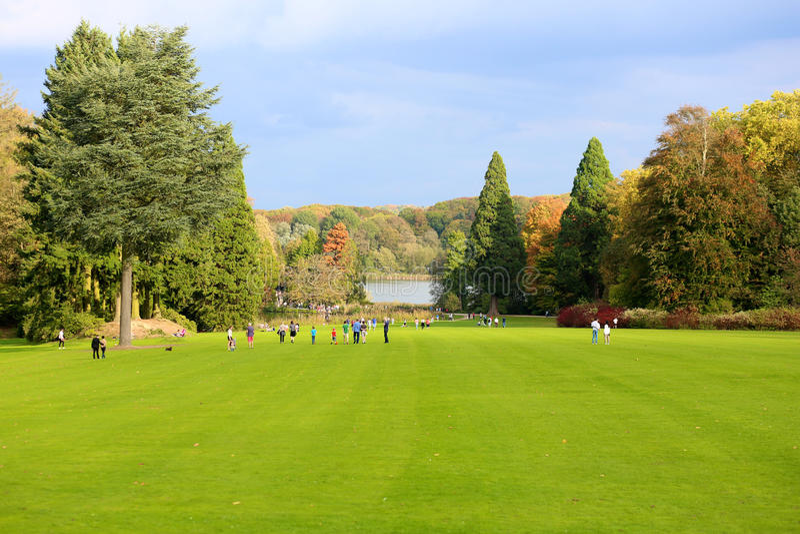 Όμορφο πάρκο φθινοπώρου με τη λίμνη στοκ εικόνες