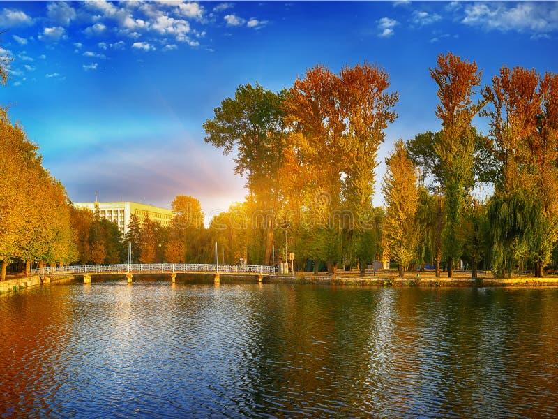 Όμορφο πάρκο φθινοπώρου στον ηλιόλουστο καιρό στοκ εικόνα με δικαίωμα ελεύθερης χρήσης