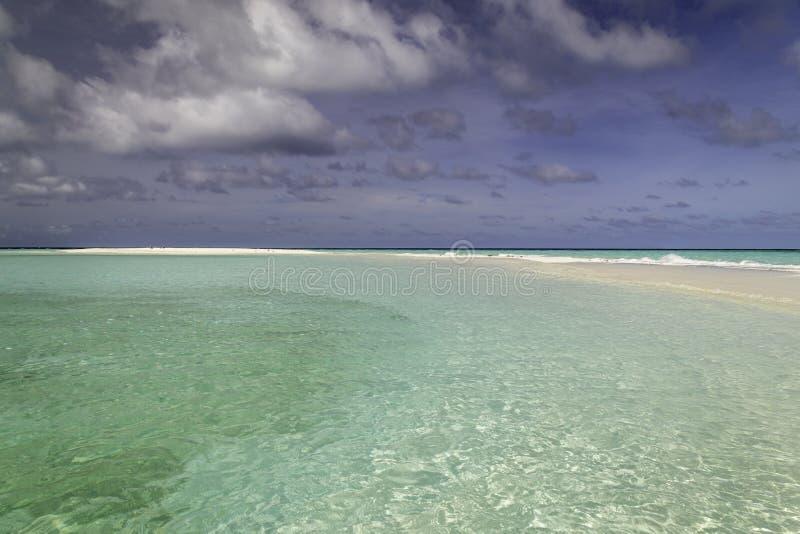 Όμορφο πανόραμα της τροπικής παραλίας στις Μαλδίβες στοκ εικόνες με δικαίωμα ελεύθερης χρήσης
