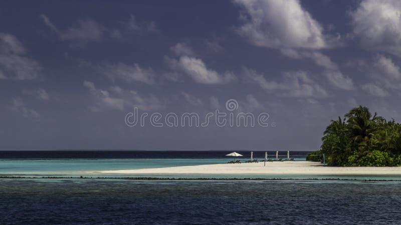 Όμορφο πανόραμα της τροπικής παραλίας στις Μαλδίβες στοκ φωτογραφία με δικαίωμα ελεύθερης χρήσης