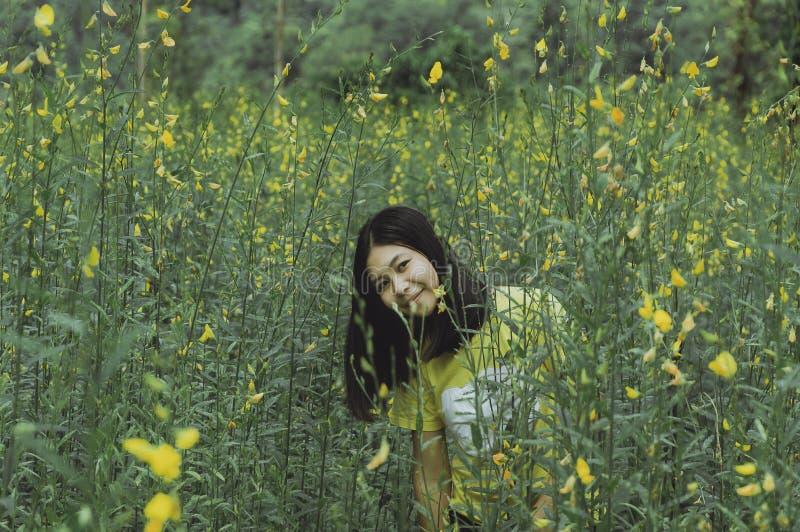 Όμορφο πορτρέτο της νέας γυναίκας asain στον κίτρινο κήπο λουλουδιών στοκ φωτογραφία με δικαίωμα ελεύθερης χρήσης