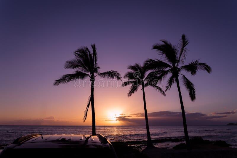 Όμορφο πορφυρό ηλιοβασίλεμα πέρα από το Ειρηνικό Ωκεανό και τρεις φοίνικες και στέγη αυτοκινήτων Oahu στοκ εικόνες
