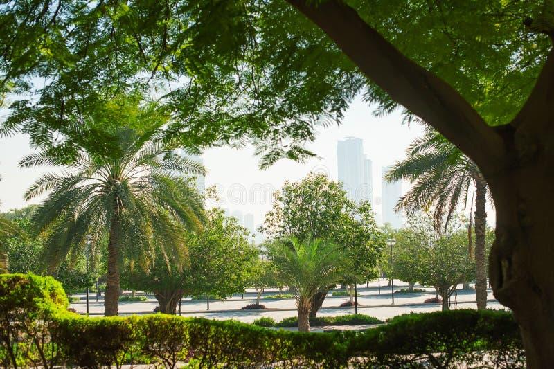 Όμορφο πράσινο πάρκο στην πόλη του Ντουμπάι, Ηνωμένα Αραβικά Εμιράτα στοκ φωτογραφία με δικαίωμα ελεύθερης χρήσης