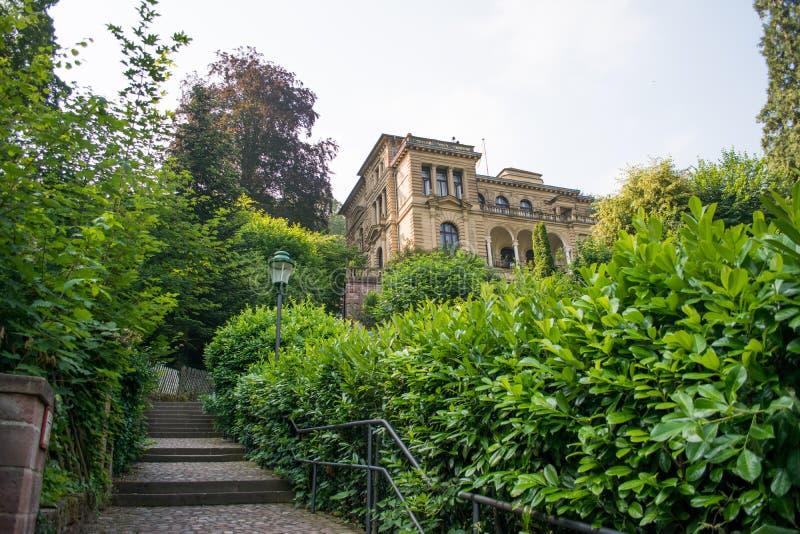 Όμορφο πράσινο σκαλοπάτι να στηριχτεί στο λόφο Χαϋδελβέργη Γερμανία στοκ φωτογραφίες