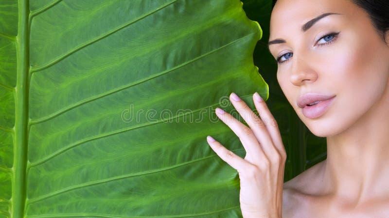 Όμορφο πρόσωπο γυναικών με τη φυσική nude σύνθεση σε ένα τροπικό λιβάδι στοκ φωτογραφίες