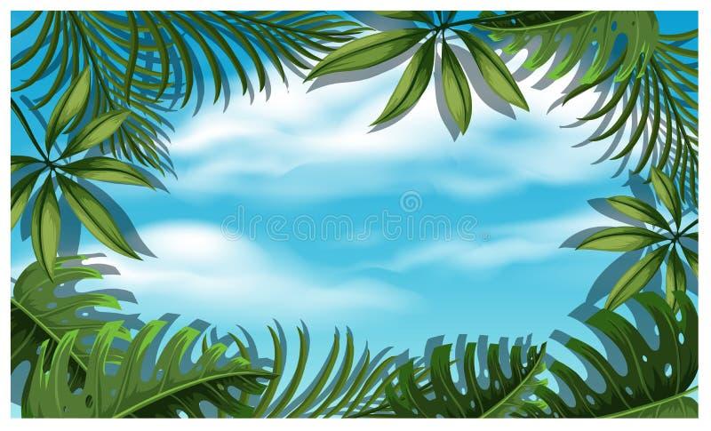 Όμορφο πρότυπο ουρανού με το φύλλο δέντρων ελεύθερη απεικόνιση δικαιώματος