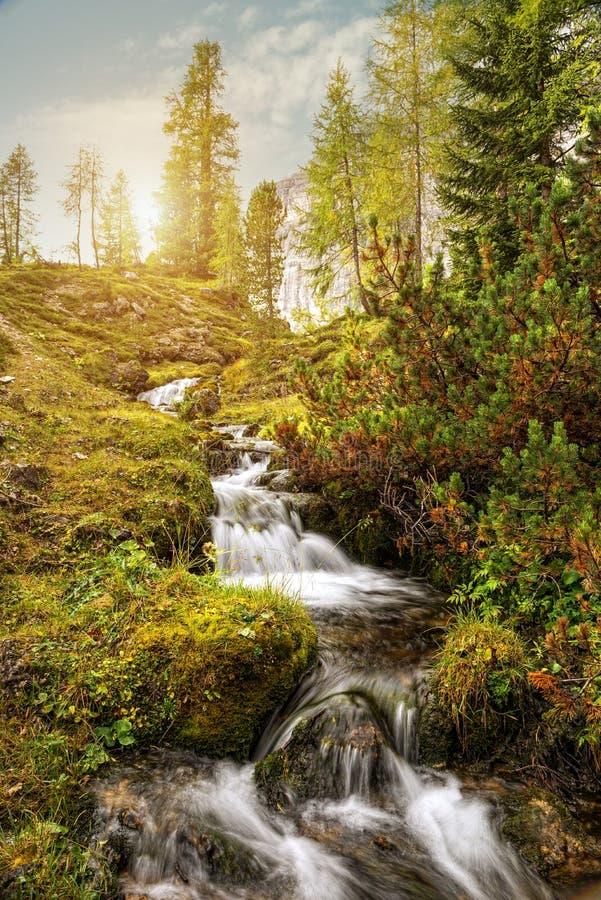Όμορφο ρεύμα βουνών στους δολομίτες στοκ εικόνες