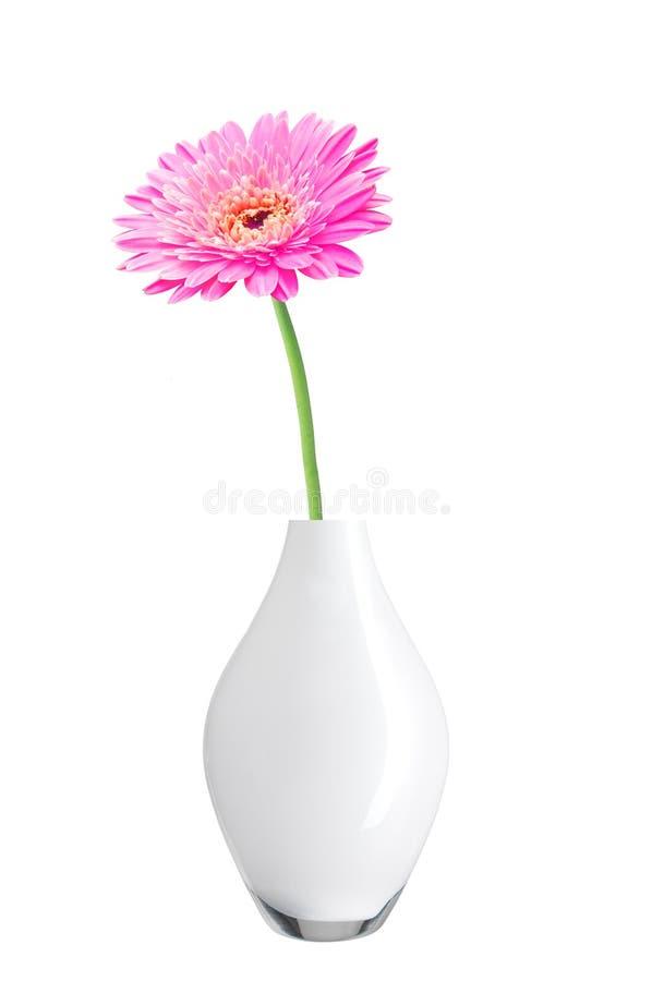 Όμορφο ρόδινο λουλούδι μαργαριτών gerbera στο βάζο στοκ φωτογραφία