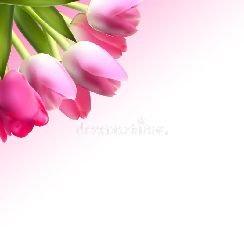 Όμορφο ρόδινο ρεαλιστικό διάνυσμα υποβάθρου τουλιπών ελεύθερη απεικόνιση δικαιώματος
