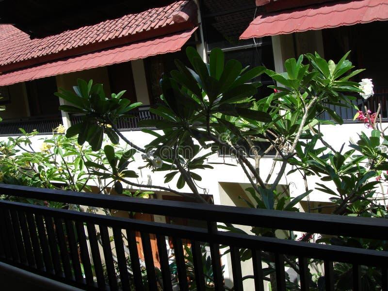 Όμορφο σπίτι του Μπαλί το πρωί στοκ εικόνα