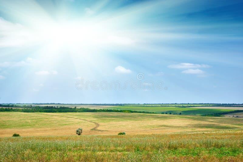 Όμορφο τοπίο άνοιξη, πράσινος τομέας και φωτεινός νεφελώδης ουρανός στοκ φωτογραφίες