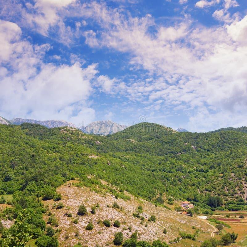 Όμορφο τοπίο βουνών την ηλιόλουστη θερινή ημέρα Μαυροβούνιο στοκ εικόνα με δικαίωμα ελεύθερης χρήσης