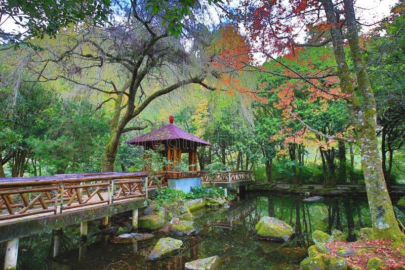 Όμορφο τοπίο λιμνών με τα ζωηρόχρωμους δέντρα και τον άξονα στοκ εικόνες με δικαίωμα ελεύθερης χρήσης