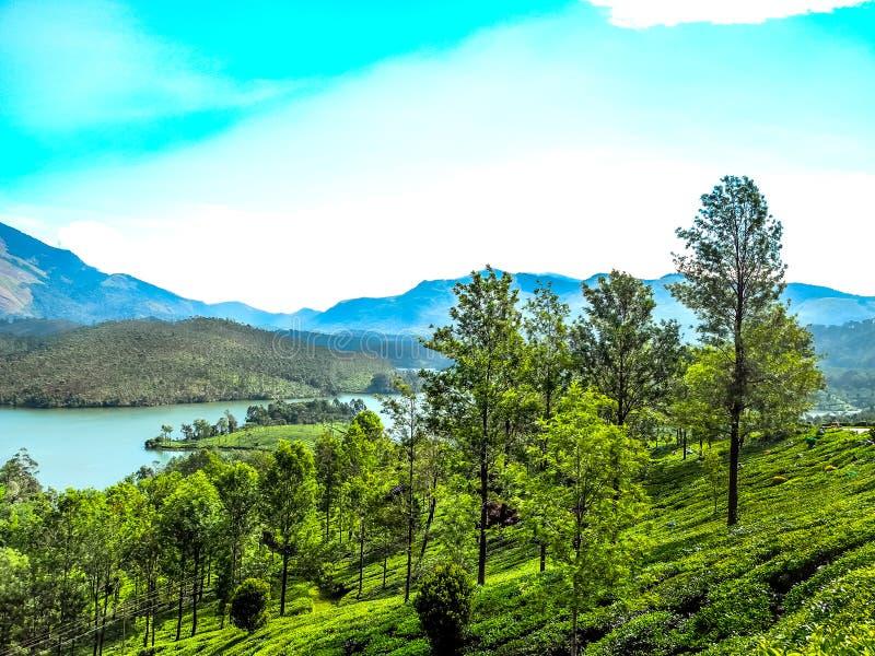 Όμορφο τοπίο με το άγριους δάσος και τον ποταμό Periyar, Κεράλα, Ινδία στοκ εικόνες