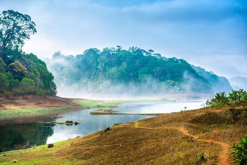 Όμορφο τοπίο με το άγριο δάσος και ποταμός με την ομίχλη στην Ινδία στοκ φωτογραφία