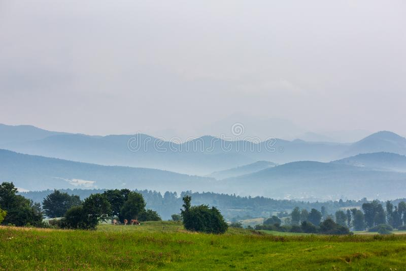 Όμορφο τοπίο με το λιβάδι και τους λόφους στοκ εικόνες με δικαίωμα ελεύθερης χρήσης