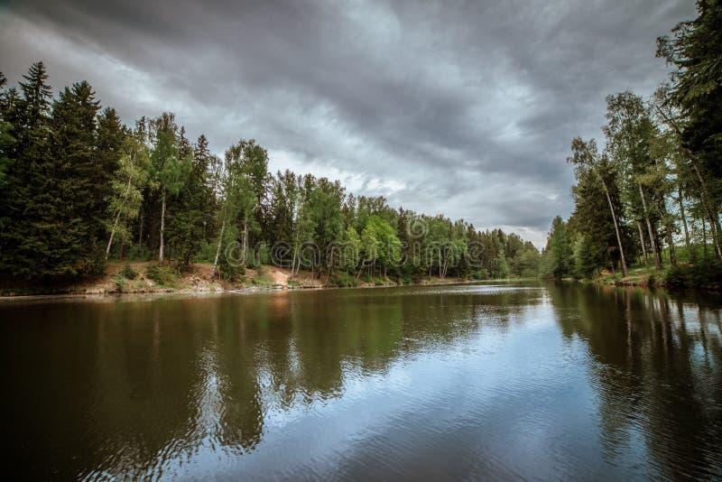 Όμορφο τοπίο μιας δασικής λίμνης Νεφελώδης καιρός με τα ασημένια σύννεφα σύστασης Ζαλίζοντας τοπίο Τα δέντρα απεικονίζονται στοκ εικόνα