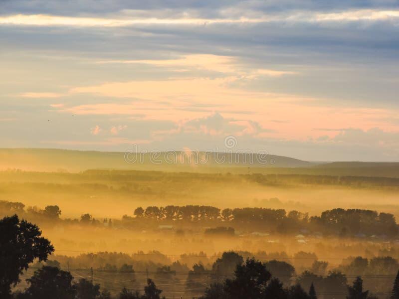 Όμορφο τοπίο στα βουνά στην ανατολή Ομιχλώδης φύση Άποψη των ομιχλωδών λόφων που καλύπτονται μέχρι το δασικό ηλιόλουστο θερινό πρ στοκ εικόνες