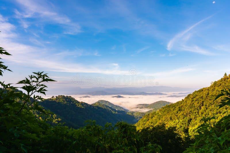 Όμορφο τοπίο τοπίου του τροπικού δάσους στο βουνό με την υδρονέφωση και του μπλε ουρανού στο φως πρωινού στοκ φωτογραφία
