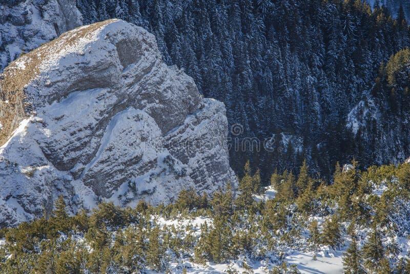 Όμορφο τοπίο του χειμερινού βράχου στοκ φωτογραφίες με δικαίωμα ελεύθερης χρήσης