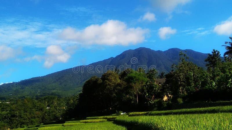 Όμορφο τοπίο το πρωί στοκ εικόνα με δικαίωμα ελεύθερης χρήσης