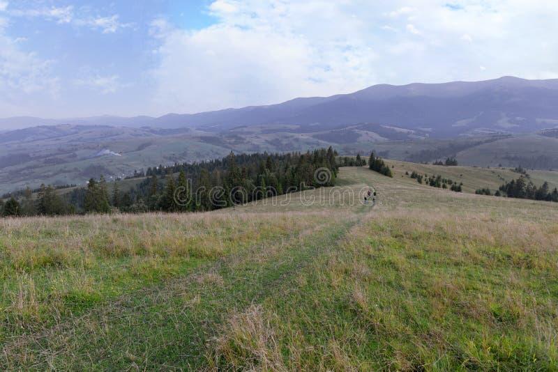 Όμορφο τοπίο των Καρπάθιων βουνών και του δρόμου που περνούν μέσω του λόφου βουνών στοκ φωτογραφία με δικαίωμα ελεύθερης χρήσης