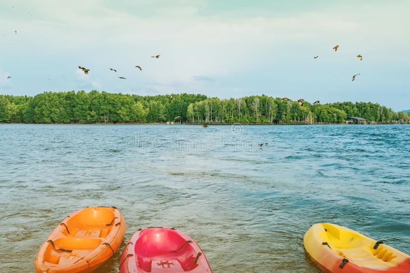 Όμορφο τοπίο των κόκκινων γερακιών πετώντας για να βρεί τα τρόφιμα με τα καγιάκ που επιπλέουν στη θάλασσα στο χωριό Chan κτυπήματ στοκ εικόνα