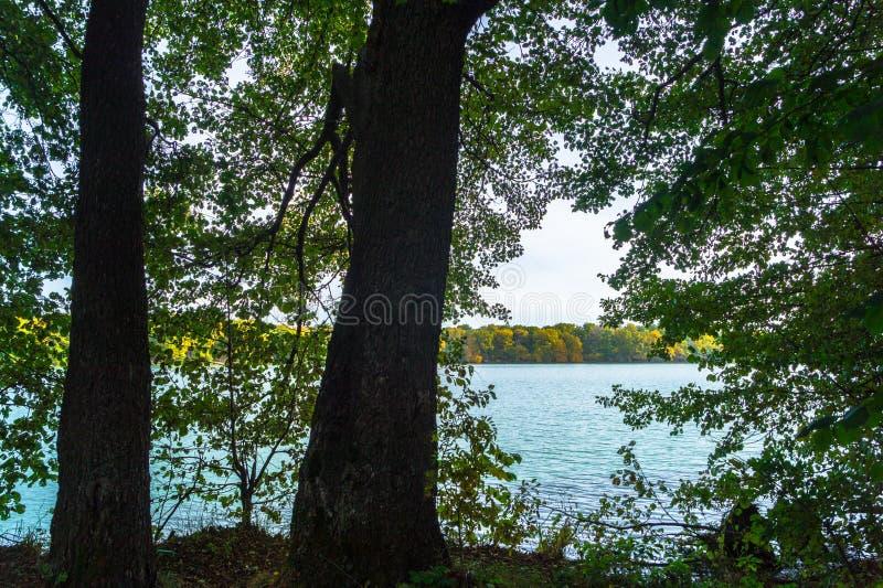 όμορφο τοπίο φθινοπώρου Άποψη της αρχαίας παγετώδους λίμνης που περιβάλλεται από τα δέντρα στοκ εικόνες με δικαίωμα ελεύθερης χρήσης