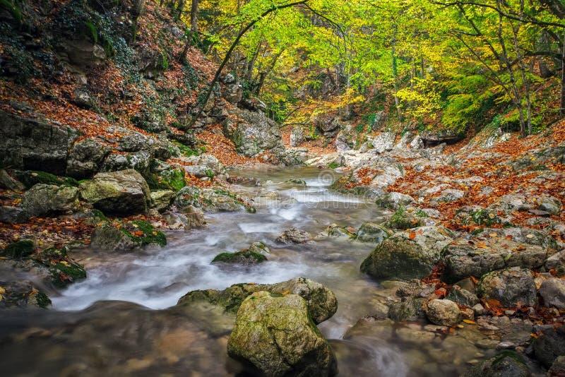 Όμορφο τοπίο φθινοπώρου με τον ποταμό βουνών, πέτρες στοκ εικόνες