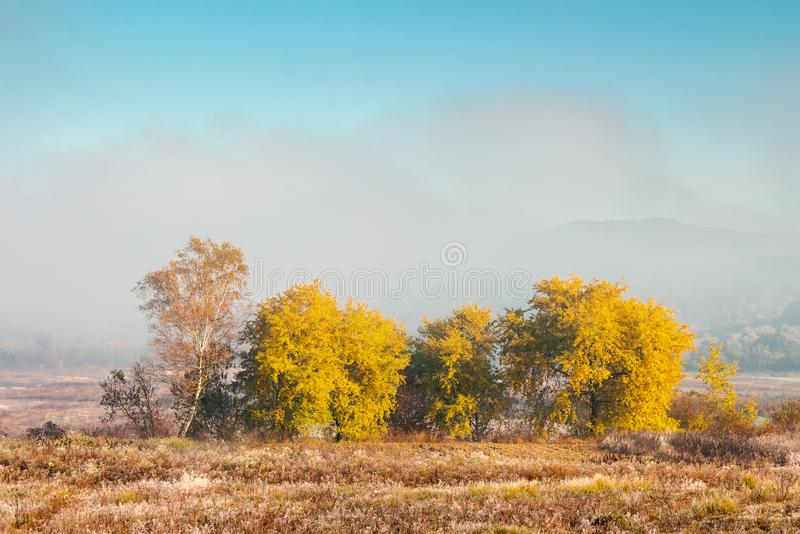 Όμορφο τοπίο φθινοπώρου στην κοιλάδα στοκ εικόνα